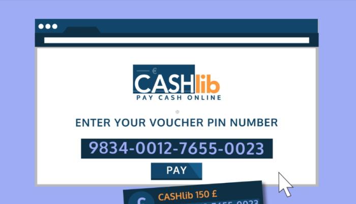 Site web de Cashlib