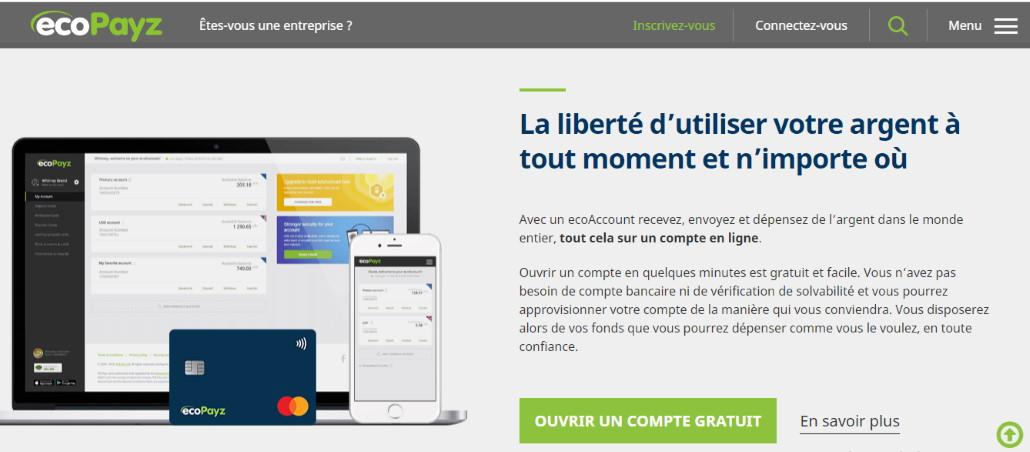 Site Web Ecopayz
